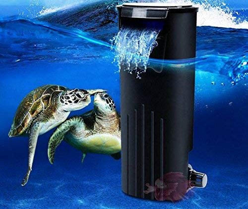 filtro para tortugas amazon
