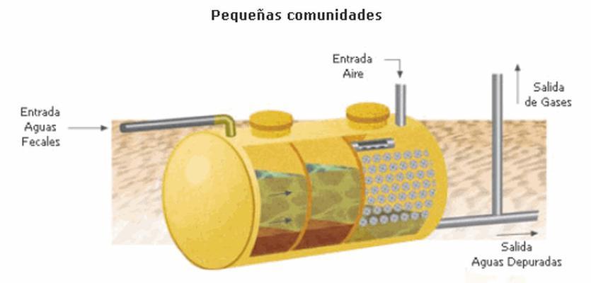 filtro biologico acuario marino